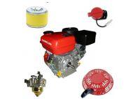 Repuestos y motores gasolina 2 y 4 tiempos
